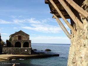 Balades en Corse Marine de scalu (12)