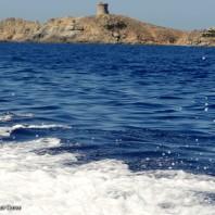 Scandola balades en Corse (6)