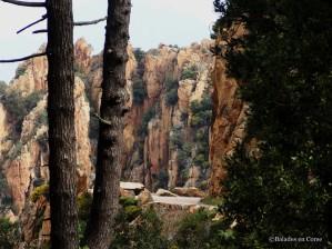 Calanche Piana Balades en Corse (1)