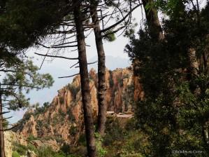 Calanche Piana Balades en Corse (2)
