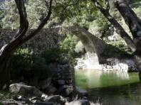 Pont génois Pianella Ota (7)