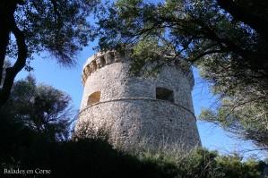 Un tour à Campomoro (15)
