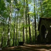 Vizzavona Notre Dame de la Forêt (7)